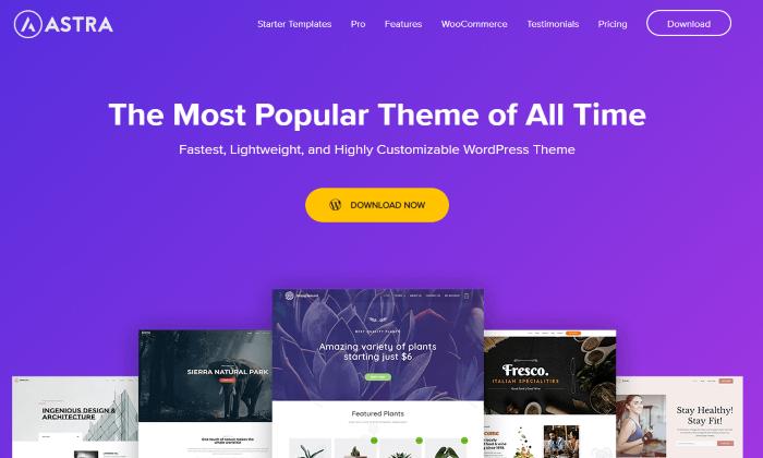 Best Ecommerce WordPress Themes