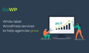 Best WordPress Maintenance and Management Services