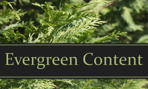 How to Create Evergreen Content Right From the Start