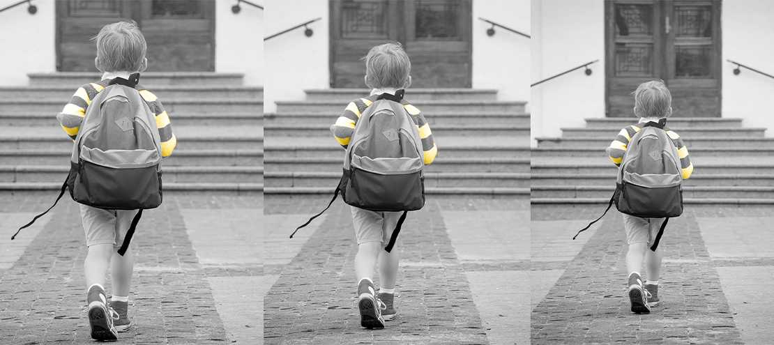 Back to School and Beyond: Nurturing Long Term Loyalty